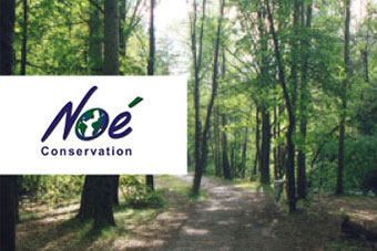 Noé Conservation Accrobranche