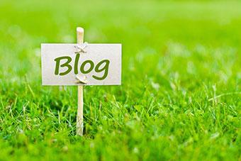 visuel blog accrobranche Parcours Aventure